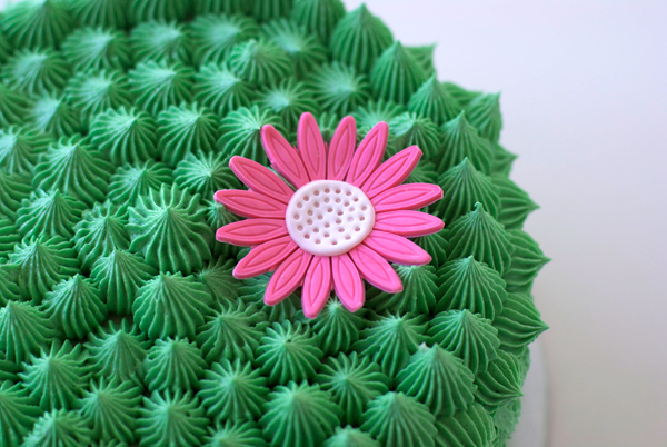 Cactus Cake With Flower