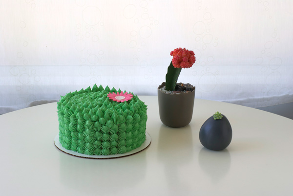 A cute cactus topper with a flower topper