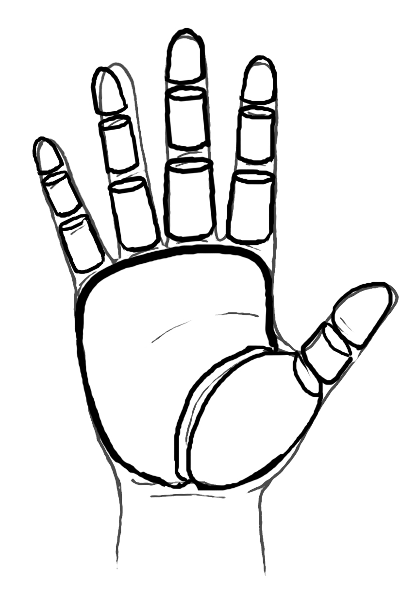 Drawing of Hands, Focus on Joints