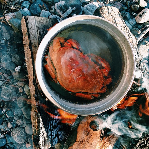 Crab Steaming in Pot Over Fire