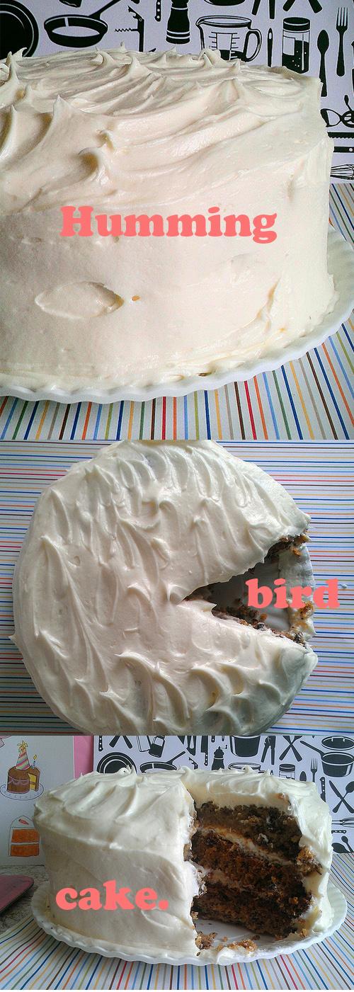 Three Views of Iced Humming Bird Cake