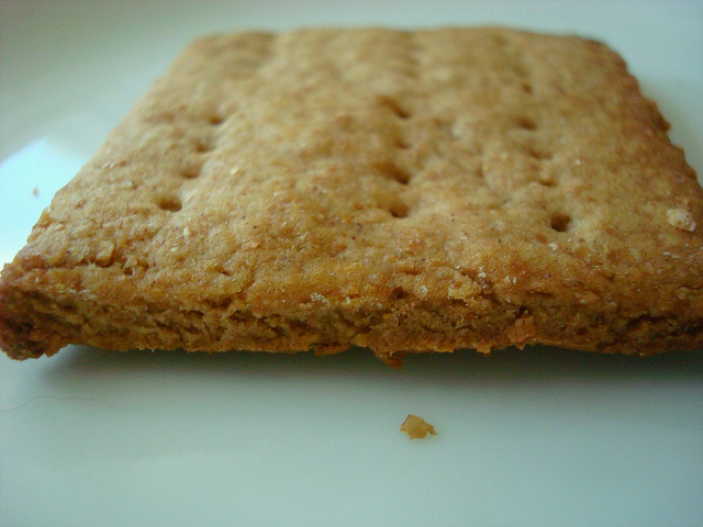 Closeup on One Graham Cracker