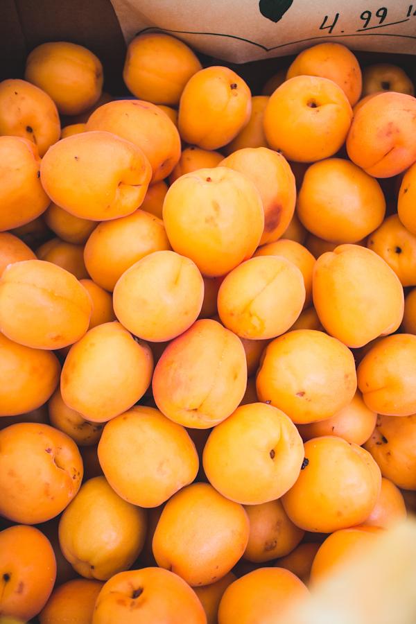 Plump Orange Apricots