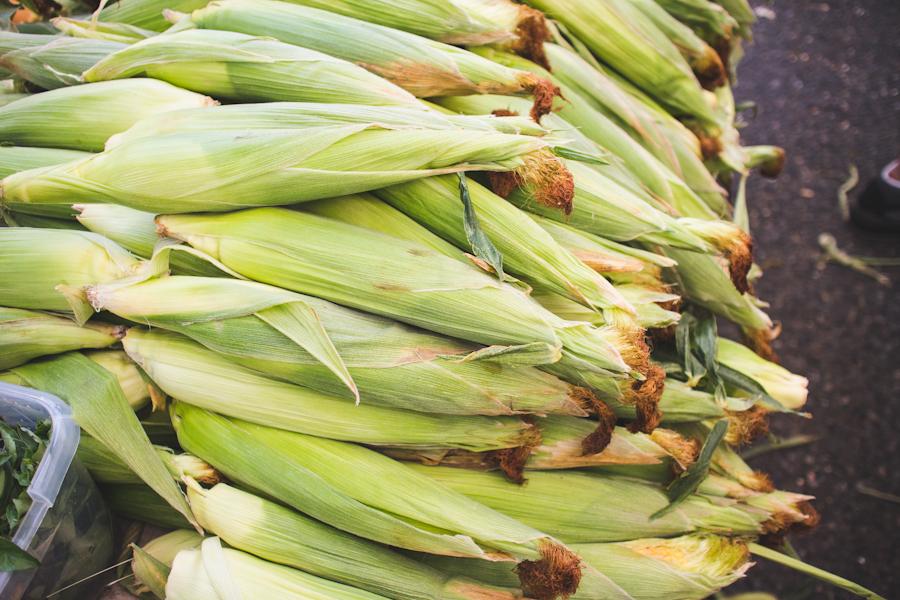 Stacks of Ears of Corn