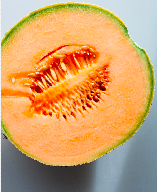 Cross Section of Juicy Cantelope