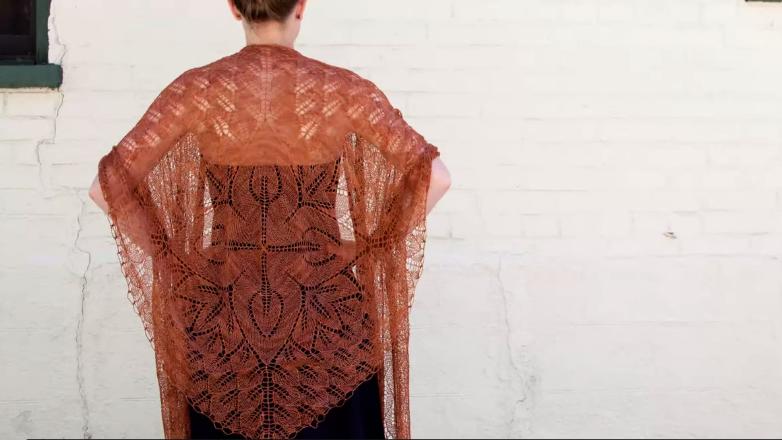 Woman Wearing Beautiful Knit Lace Shawl