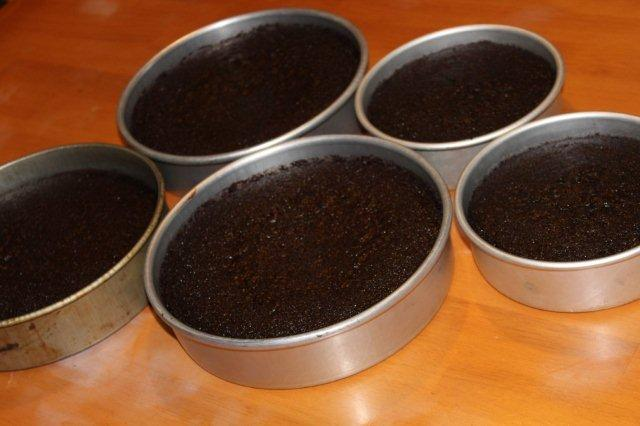 Cake Layers in Pans