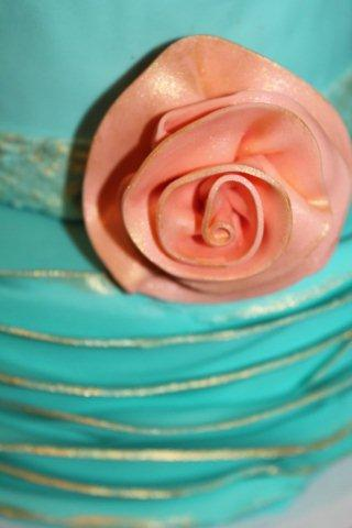 Close-Up on Rose