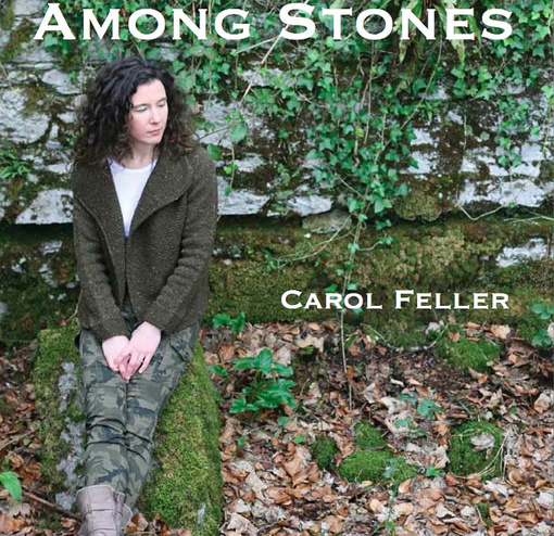 Cover of Carol Feller's Book Among Stones