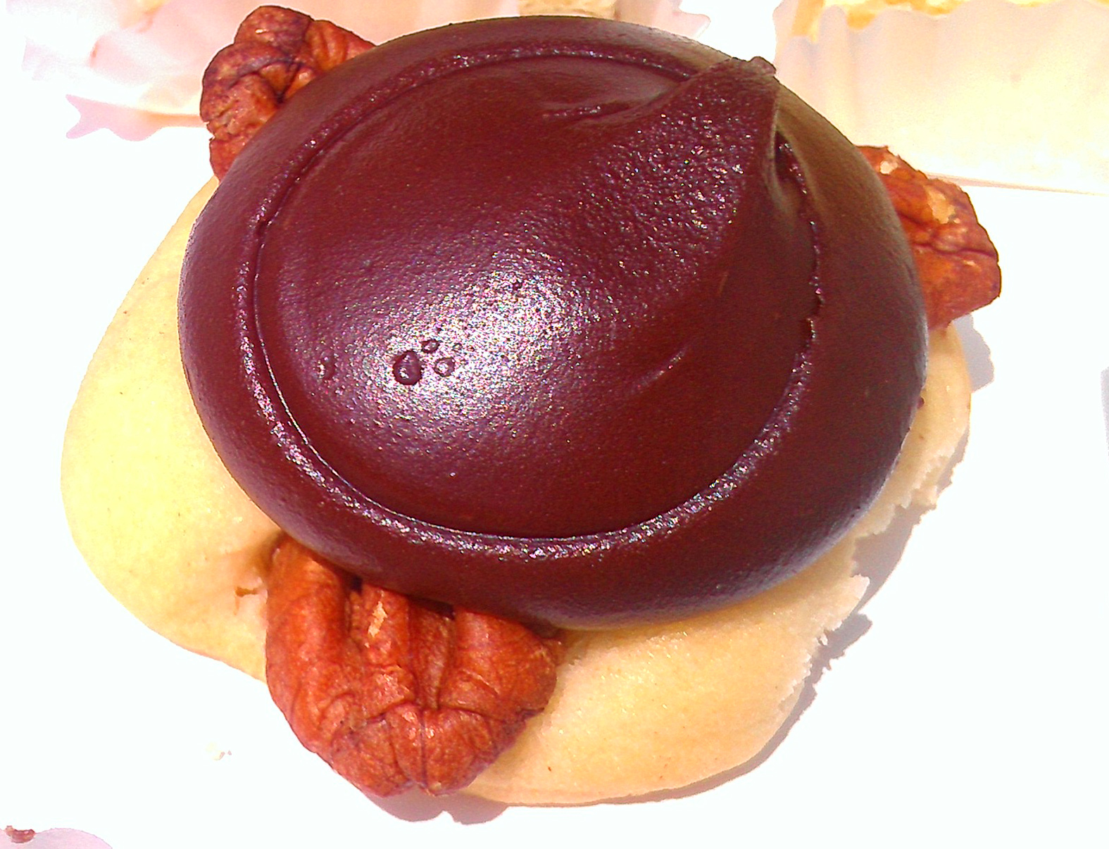 Close-Up of Chocolate and Caramel Turtle
