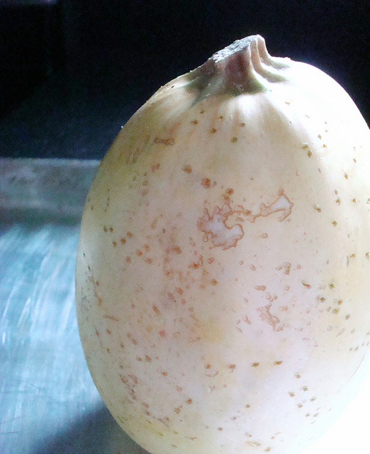 Outside of Spaghetti Squash