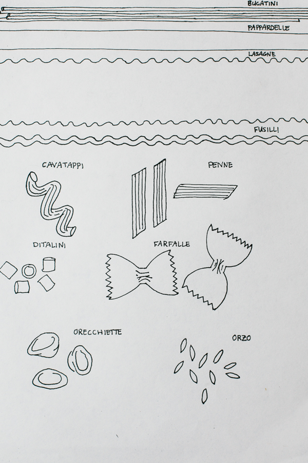 Drawing of Different Pasta Shapes and Types