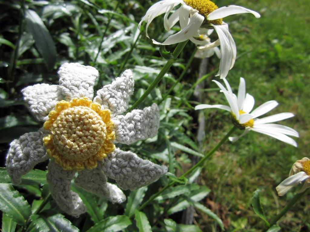 Knit White Chrysanthemum