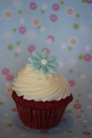 red velvet cupcake with blue flower