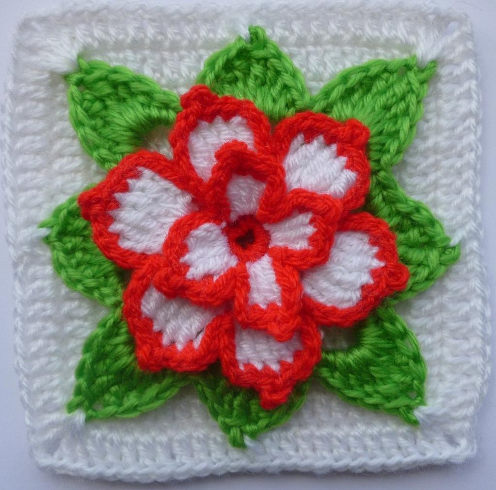 poinsettia blanket