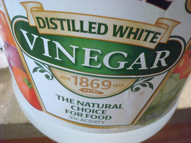 Bottle of Vinegar