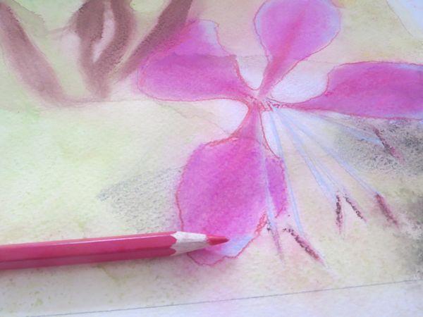Blending Watercolor Pencil