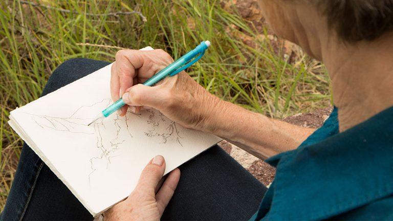Diario ilustrado de naturaleza