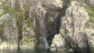 Kenai Fjords