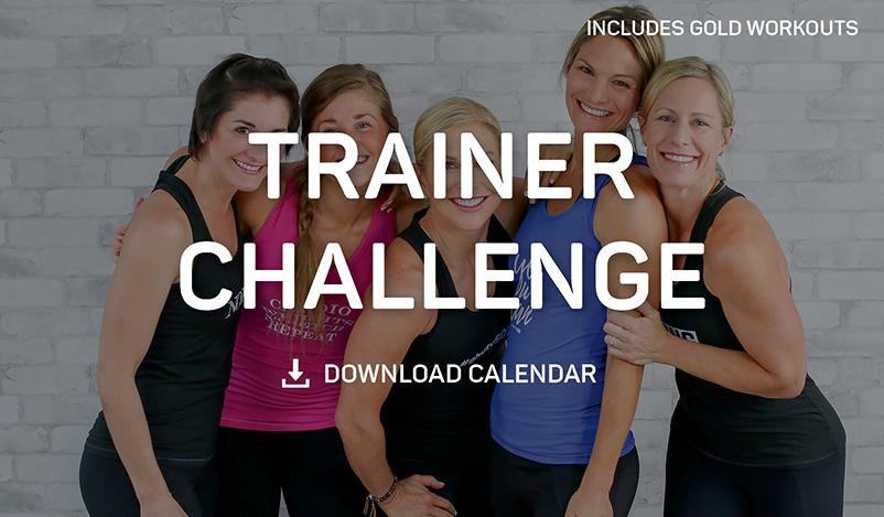Trainer Challenge