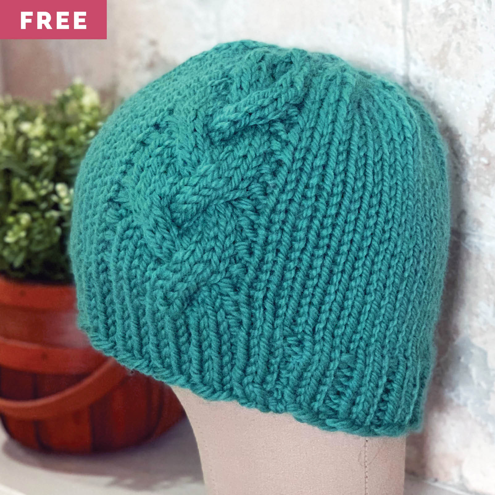 Free Knitting Pattern - Braided Cable Beanie