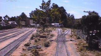 model train shows