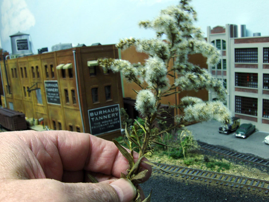 making model railroad trees from goldenrods-4