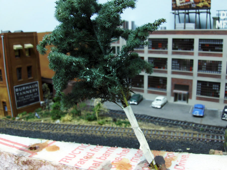 making model railroad trees from goldenrods-7