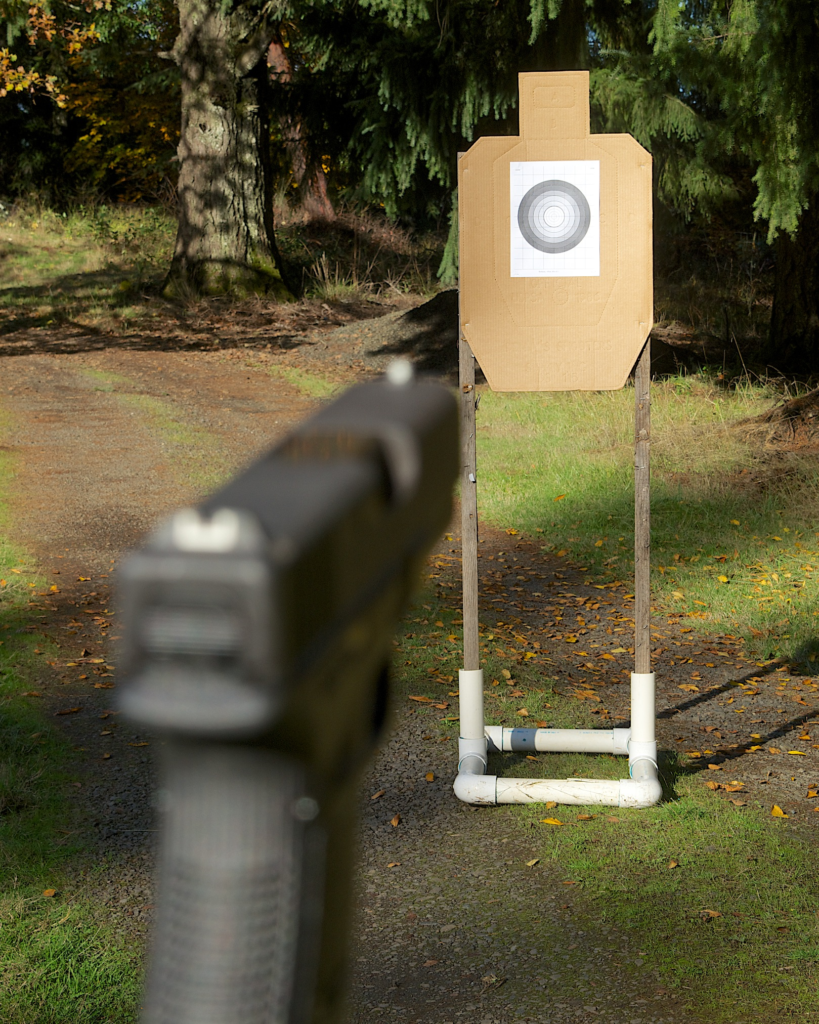 Image of blurred gun sight and clear target