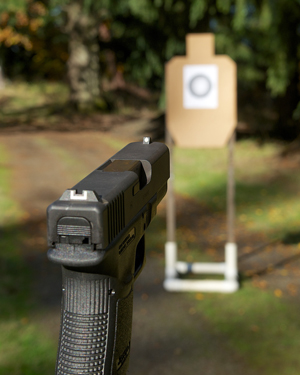 Image of a gun clear and a blurred target