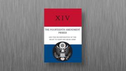 ahero Store Image - Book 14th Amendment Primer