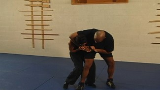 Defensive Knee Strikes
