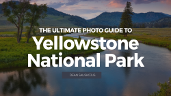 hero_Ultimate guide to Yellowstone national park