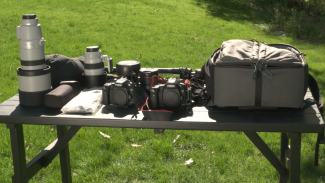 Packing Your Camera Bag for an Extended Wildlife Trip