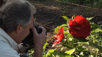 Telephoto vs Macro Lens