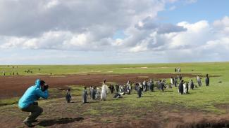 013749f_B2F75U_c Falkland Course Preview