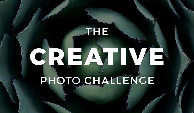 The Creative Photo Challenge