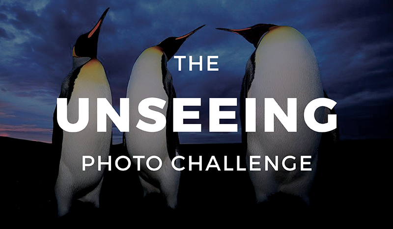 The Unseeing Photo Challenge