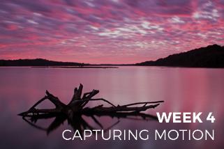 The Creative Photo Challenge - Week 4