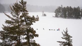 Shooting Winter Landscape