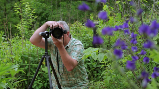 Photographing Wildflowers