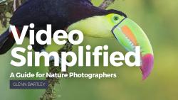 hero_Video Simplified_NEW