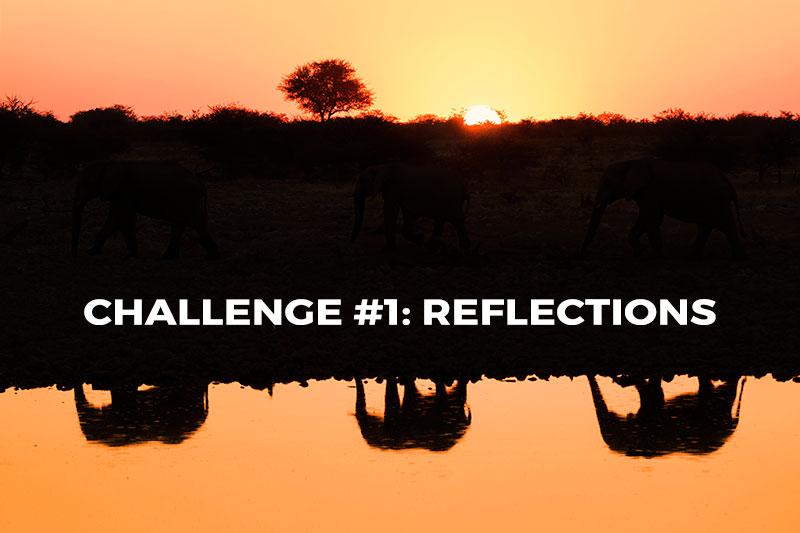 photo-challenge-hero-test