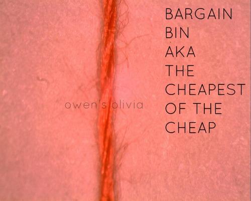 Bargain_Bin1
