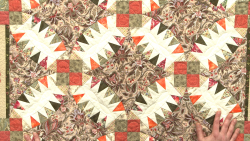 ahero NQC K3700U Style and Inspiration for the Clever Quilter-Applique Shapes