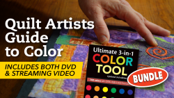 Quilt Artist Guide to Color Class + DVD & Color Tool