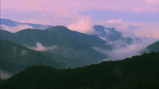 Great Smoky Mountains National Park-008734f_T3386u_c
