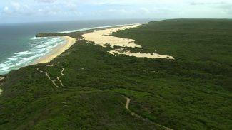 Green_Paradise_Australia_On_The_Majestic_East_Coast