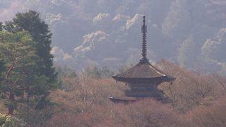 113+Kyoto_HD