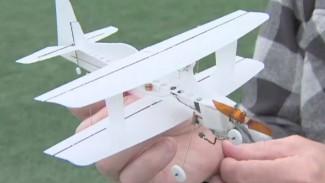 Nick Leichty: Micro Bipe Aerobatic RC Plane